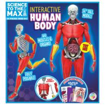 Interactive Human Body - BAT2331 | Be Amazing Toys | Human Anatomy