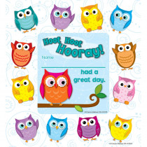 CD-101075 - Colorful Owls Awards & Rewards in Awards