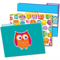 CD-136009 - Colorful Owls Folders in Folders