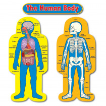 CD-3215 - Bulletin Board Set Child-Size Human Body 2 Figures 50T in Science