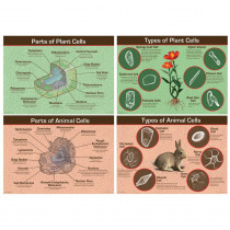 CD-410056 - Animal & Plant Cells Bulletin Board Set in Science