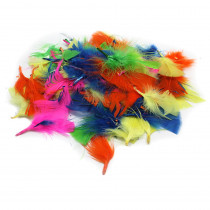 CHL63030 - Turkey Feathers Hot Colors 14G Bag in Feathers