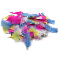 CHL63040 - Turkey Feathers Spring Colors 14G Bag in Feathers
