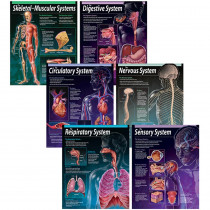 CTP5715 - Human Body Chart Pack in Science