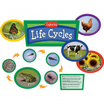 EP-2287 - Exploring Life Cycles Bulletin Board Set in Science