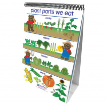 NP-340021 - Flip Charts All About Plants Early Childhood Science Readiness in Plant Studies