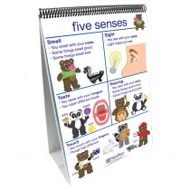 NP-340027 - Flip Charts All About Me Early Childhood Science Readiness in Human Anatomy