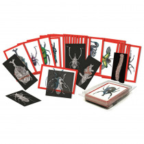 R-5912 - Insect X-Rays And Picture Cards in Animal Studies