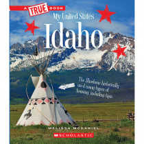 SC-ZCS674181 - My United States Book Idaho in Social Studies