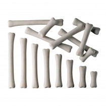 YUS1033 - Dinosaur Bones Match & Measure Set in General