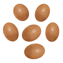 YUS1087 - Sensory Sound Eggs in Gross Motor Skills