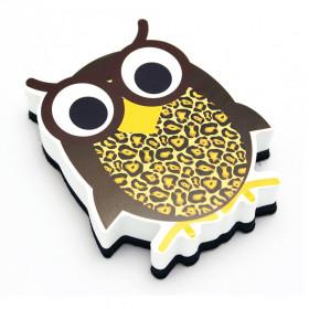 Magnetic Whiteboard Eraser, Wise Owl