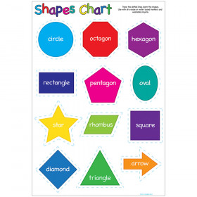 Shapes 13X19 Smart Poly Chart 13X19 Poly Chart