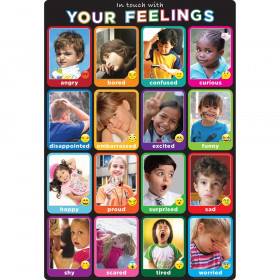 """Smart Poly Chart Emotions Photographs, 13"""" x 19"""""""