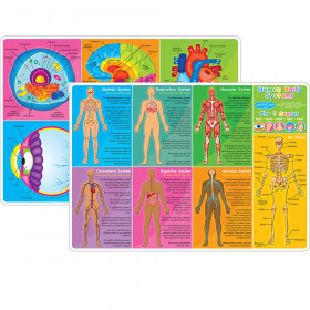 """Smart Poly Learning Mat, 12"""" x 17"""", Double-Sided, Human Body Systems & Anatomy"""