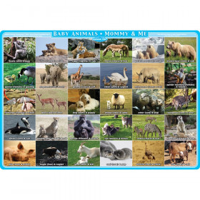 """Smart Poly Single Sided PosterMat Pals, Mommy and Me Animals, 12"""" x 17.25"""""""