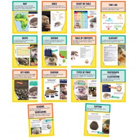 Mini Posters: Nonfiction Text Features Poster Set, Grade 1-6, 14 Pieces