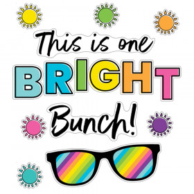 Kind Vibes This Is One Bright Bunch Bulletin Board Set
