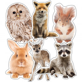 Woodland Whimsy Animals Extra Large Cut-Outs, Pack of 12