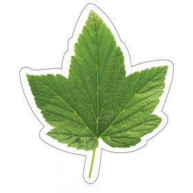 Woodland Whimsy Green Leaf Cut-Outs, Pack of 36