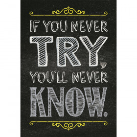 If you never try Inspire U Poster