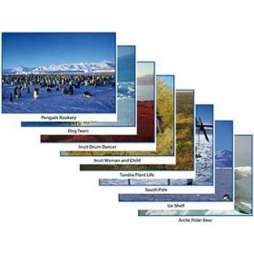 Around The World Photo Activity Cards Polar Regions