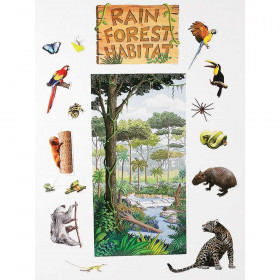 Rain Forest Habitat Bulletin Board Set