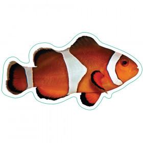 Ocean Life Bb Accents