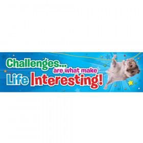 Challenges Jumbo Banner