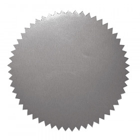 Stickers Silver Blank 50/Pk 2 Diameter