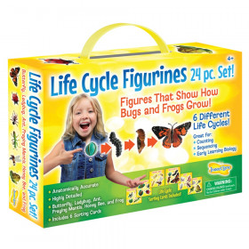 Life Cycle Figurines 24pc. Set