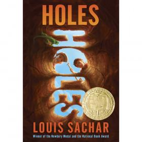 Holes Book