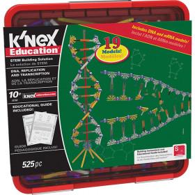 Knex Dna Replication Transcription