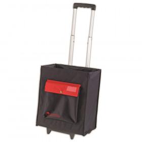A+ Carry-All Organizational Caddy