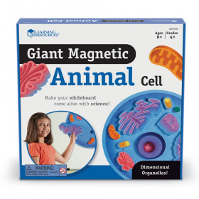 Giant Magnetic Animal Cells