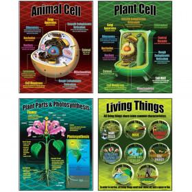 Life Science Teaching Poster Set