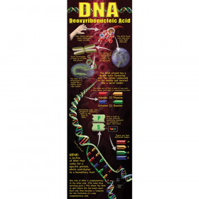 DNA Colossal Concept Poster