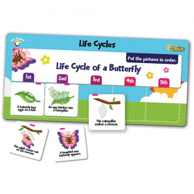 Flipchex Science Life Science Life Cycles