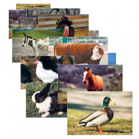 Farm Animal Real Life Learning Poster Set, Set of 10