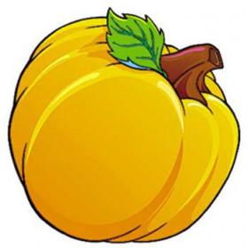 Classic Accents Pumpkin Patch 36/Pk 5 X 5
