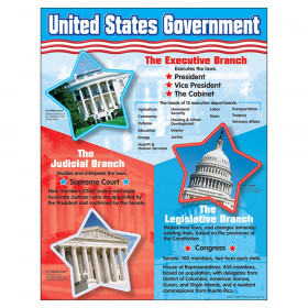 "United States Government Learning Chart, 17"" x 22"""