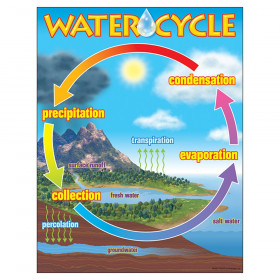 "The Water Cycle Learning Chart, 17"" x 22"""