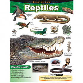 Exploring Reptiles Learning Chart