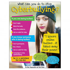 "Cyberbullying (Secondary) Learning Chart, 17"" x 22"""