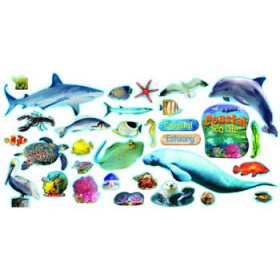 Coastal Sea Life Mini Bulletin Board Set
