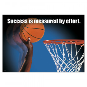 """Success is measured by... ARGUS Poster, 13.375"""" x 19"""""""
