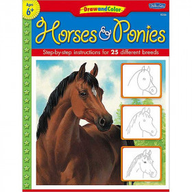Draw And Color Horses And Ponies