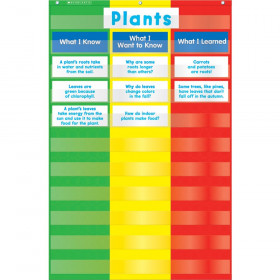 Scholastic 3-Column Chart Pocket Chart with Cards