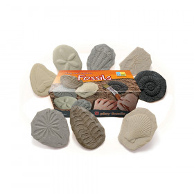 Let's Investigate Fossil Stone, Pack of 8